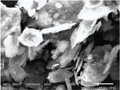 Hình ảnh chụp kính hiển vi điện tử quét (SEM) của nguyên liệu graphite Việt Nam